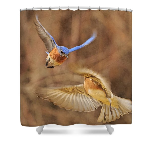 Bluebirds Aerial Art Shower Curtain
