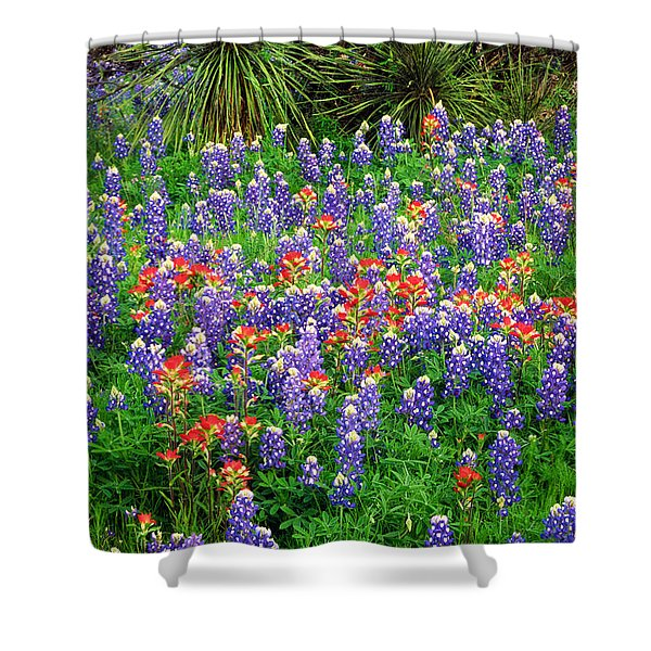 Bluebonnets And Paintbrush Shower Curtain