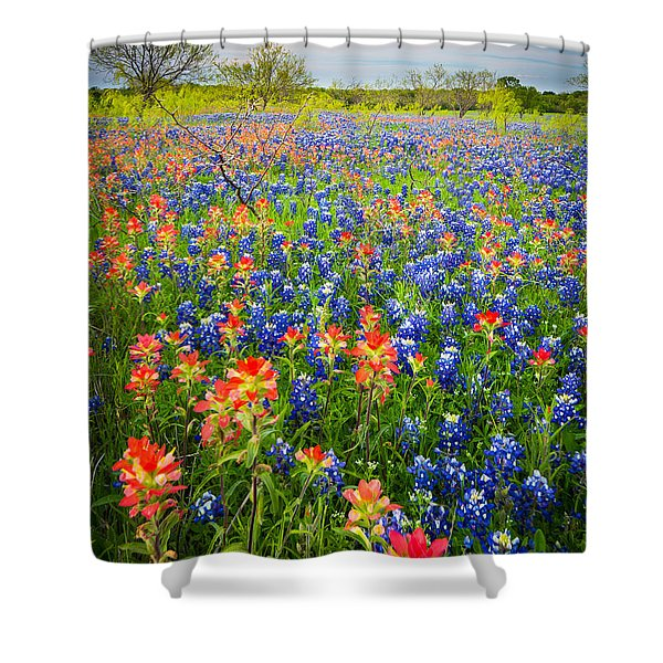 Bluebonnets And Prarie Fire Shower Curtain