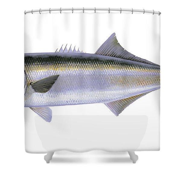 Bluefish Shower Curtain