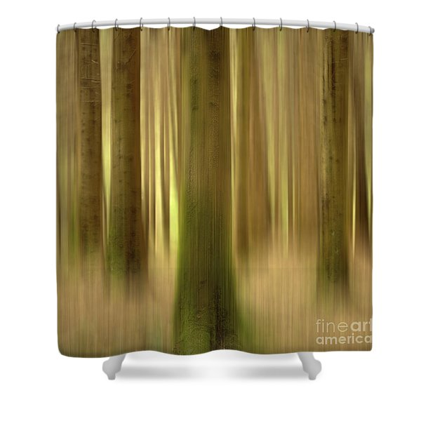 Blurred Trunks In A Forest Shower Curtain