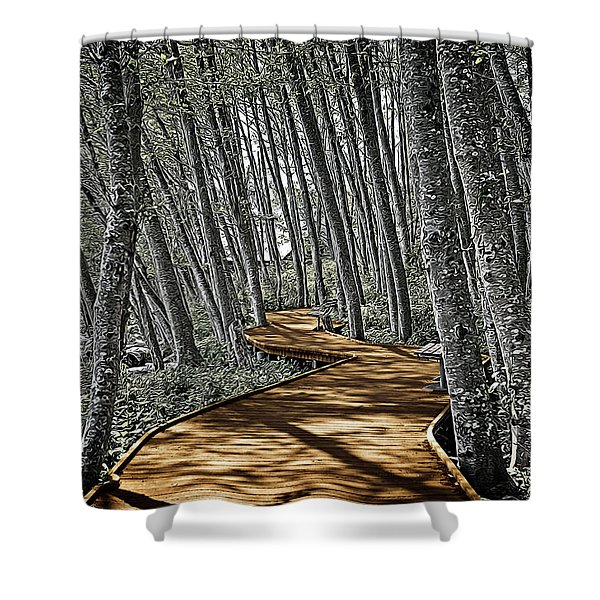 Boardwalk In The Woods Shower Curtain