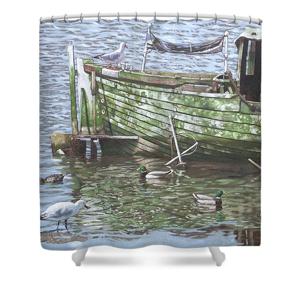 Boat Wreck With Sea Birds Shower Curtain