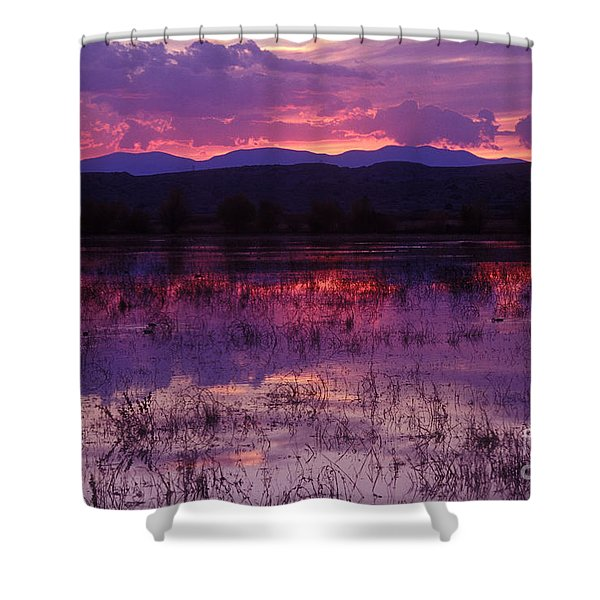 Bosque Sunset - Purple Shower Curtain