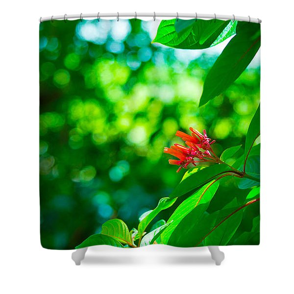 Botanical Garden Butterfly Shower Curtain