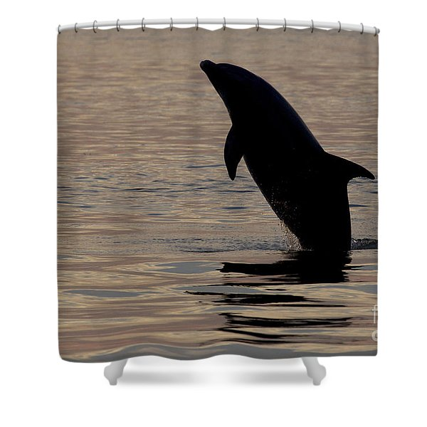 Bottlenose Dolphin Shower Curtain