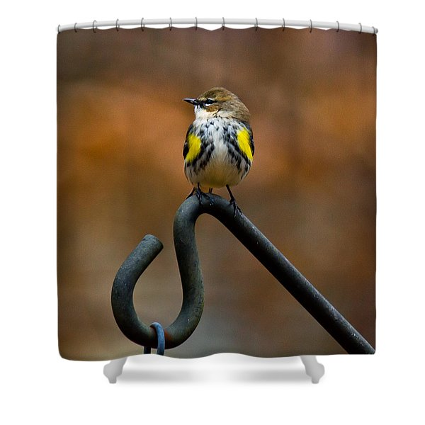 Shower Curtain featuring the photograph Bought A New Vest Today by Robert L Jackson