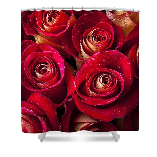 Boutique Roses Shower Curtain