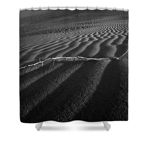 Branch Out In The Desert Shower Curtain