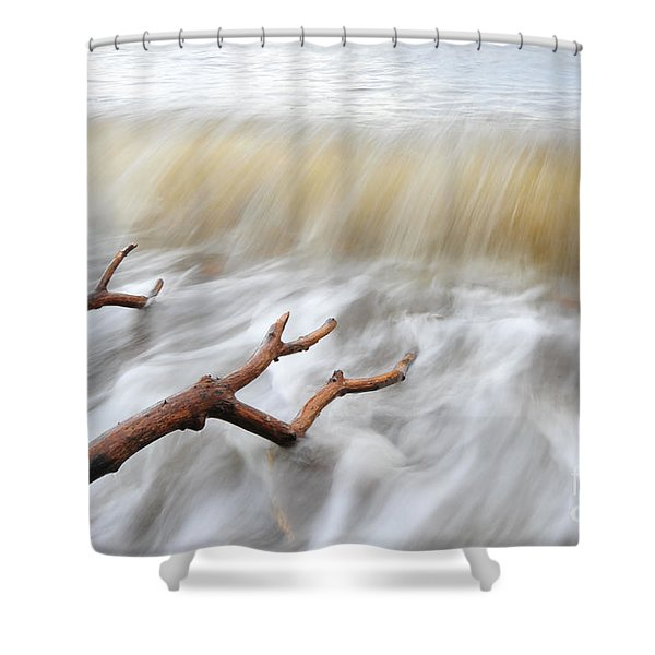 Branches In Water Shower Curtain