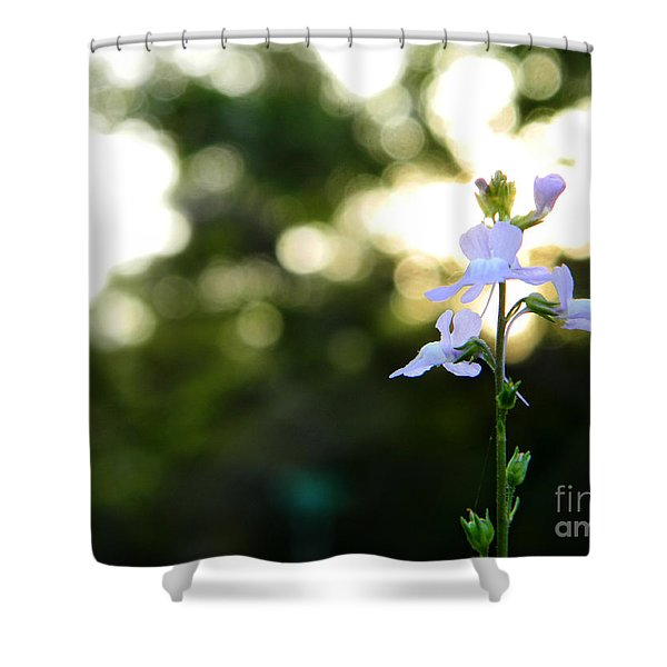 Breath Shower Curtain