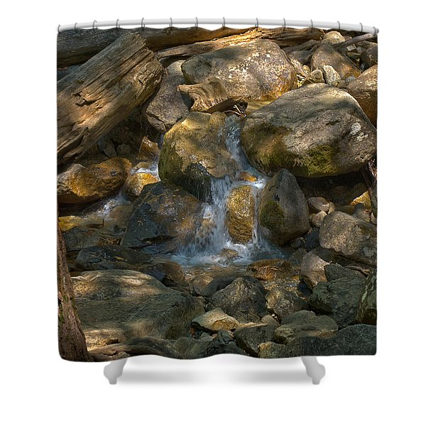 Bridalveil Creek I Shower Curtain