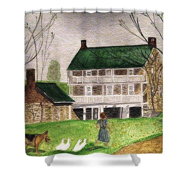 Bringing Home The Ducks Shower Curtain
