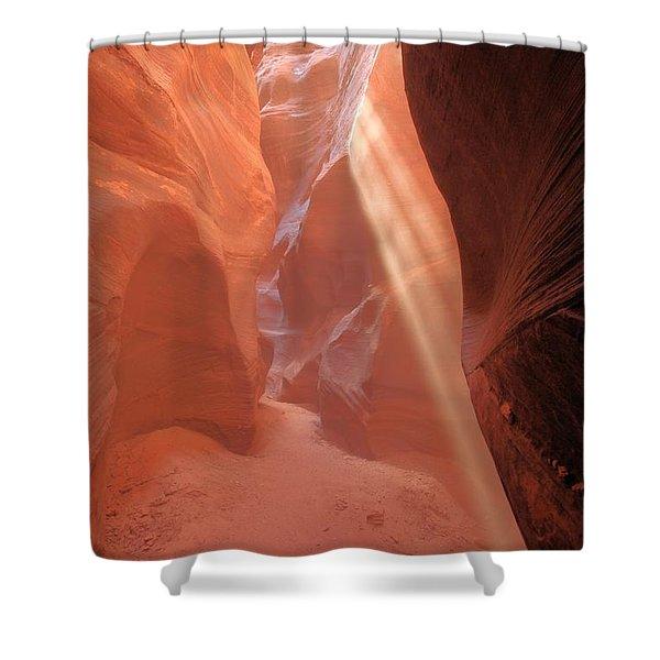 Buckskin Beam Shower Curtain