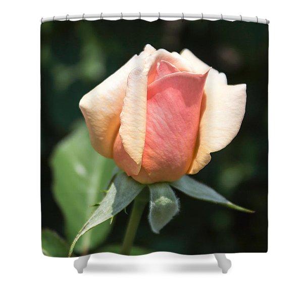 Budding Romance Shower Curtain
