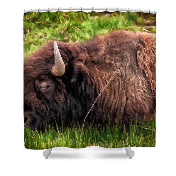 Buffalo Cat Nap Shower Curtain