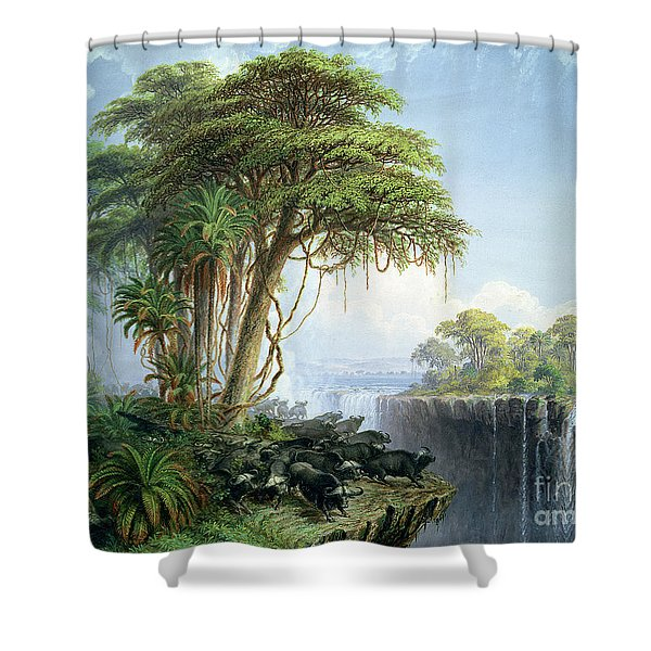 Buffalos Driven To The Edge Of The Chasm Opposite Garden Island Victoria Falls Shower Curtain