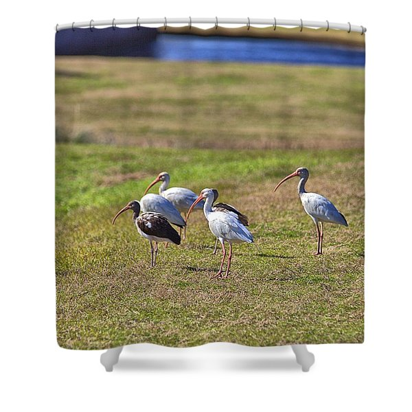 Bug Hunting Shower Curtain
