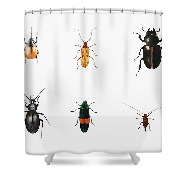 Bugs Shower Curtain