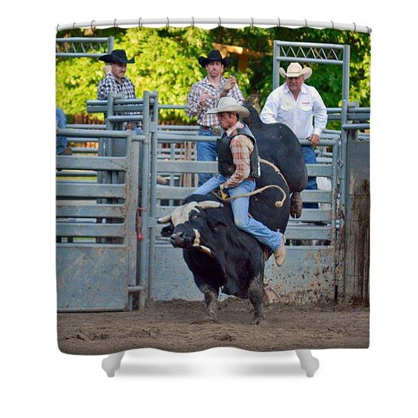 Bull Fool Shower Curtain