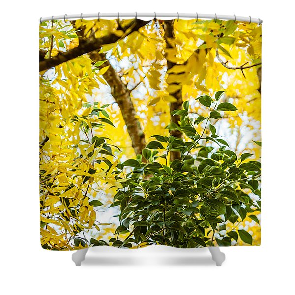 Bunch Of Green Shower Curtain