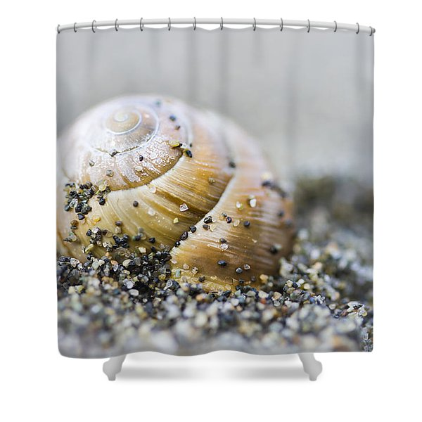 Buried Shower Curtain