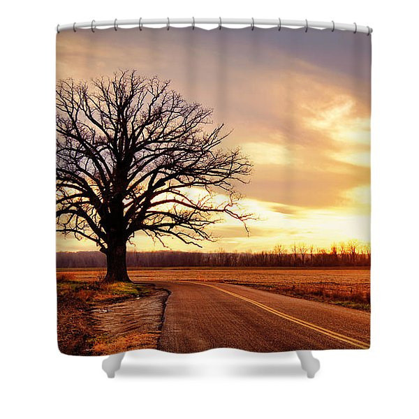 Burr Oak Silhouette Shower Curtain
