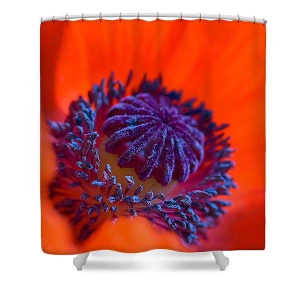Bursting With Colour Shower Curtain