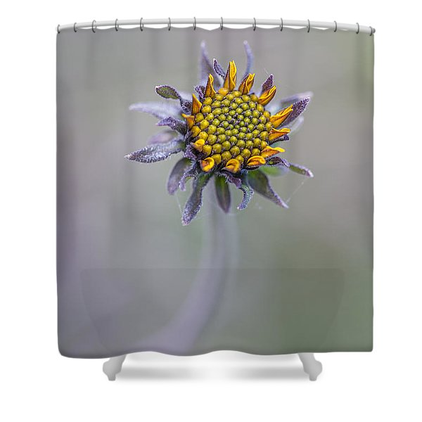 Bush Sunflower Opening Shower Curtain