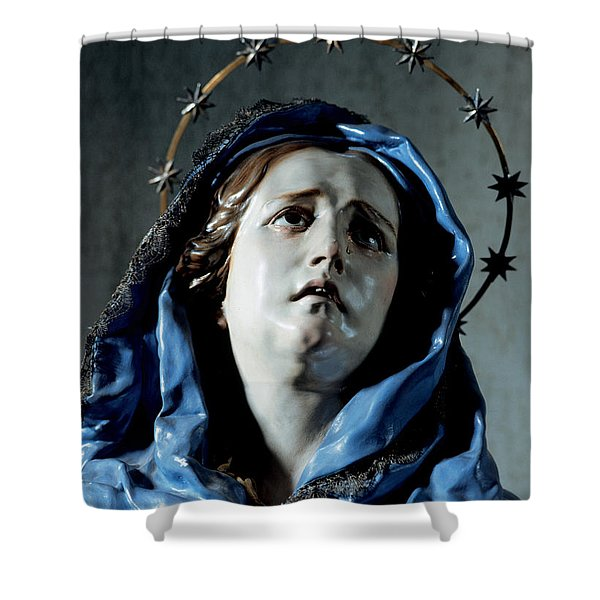 Bust Of Painful Virgin Shower Curtain