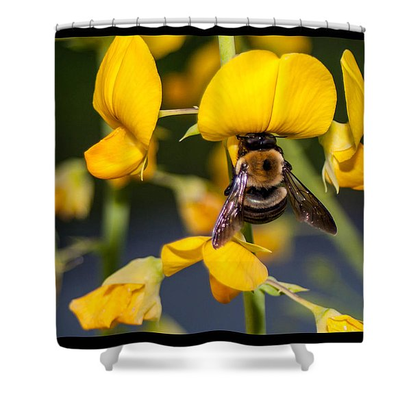 Busy Bee 3 Shower Curtain