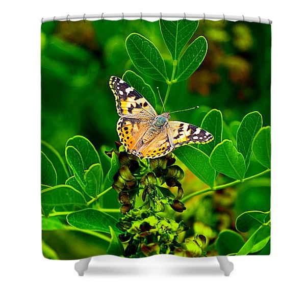 Shower Curtain featuring the photograph Butterfly In Paradise by Gunter Nezhoda