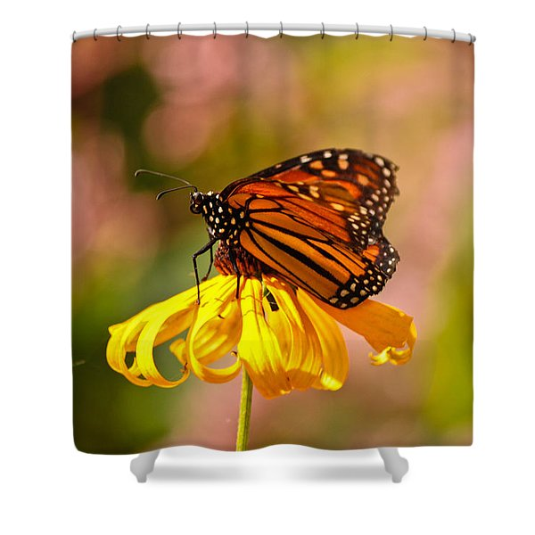 Butterfly Monet Shower Curtain
