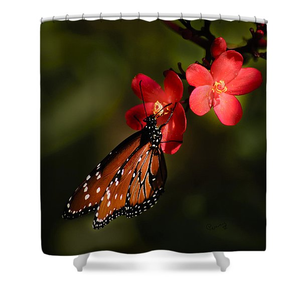 Butterfly On Red Blossom Shower Curtain