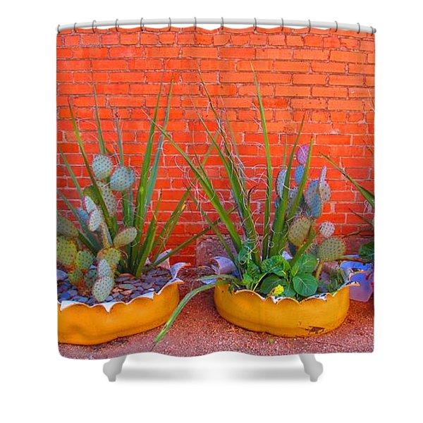 Cacti Quartet Shower Curtain