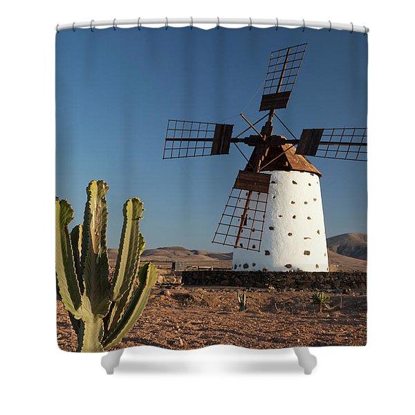 Cactus And Wind Mills In Fuerteventura Shower Curtain
