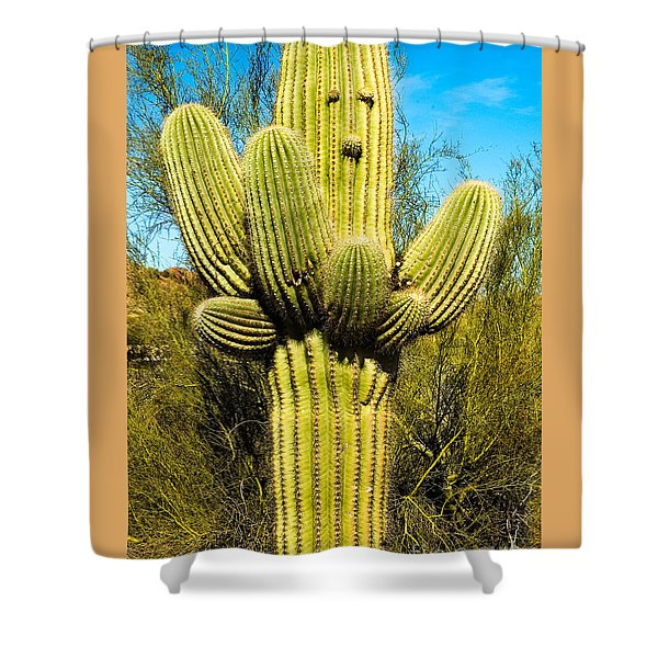 Shower Curtain featuring the photograph Cactus Face by Mae Wertz