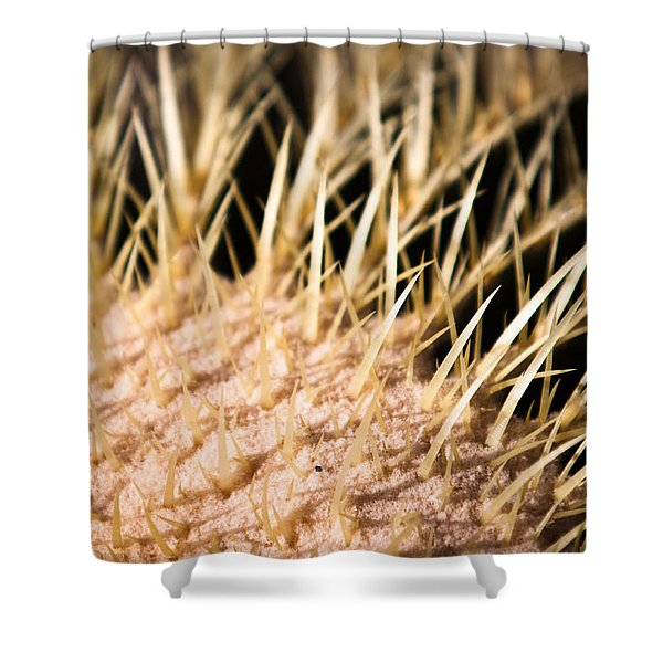 Shower Curtain featuring the photograph Cactus Skin by John Wadleigh