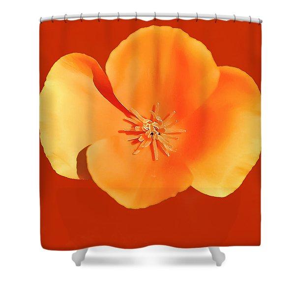 California Poppy Painting Shower Curtain