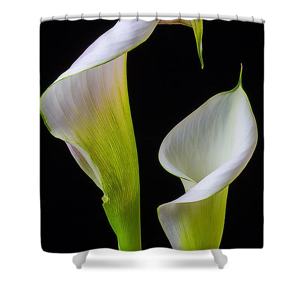 Calla Liliy Shapes Shower Curtain
