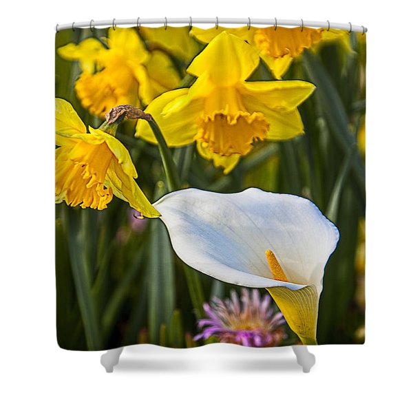 Calla Lily And Doffodils Shower Curtain