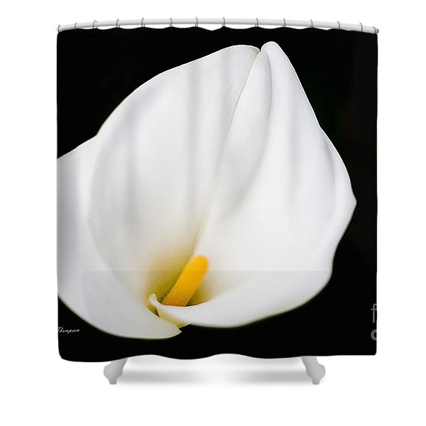Calla Lily Flower Face Shower Curtain