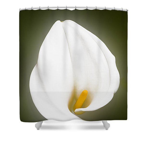 Calla Lily Flower Glow Shower Curtain