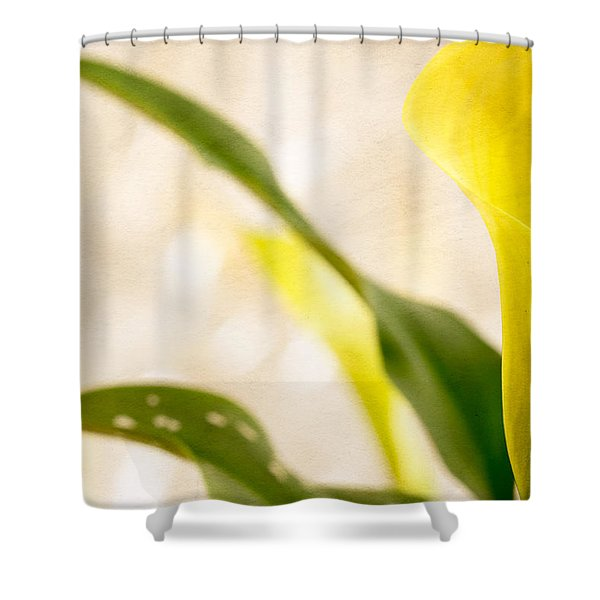 Calla Lily Two Shower Curtain