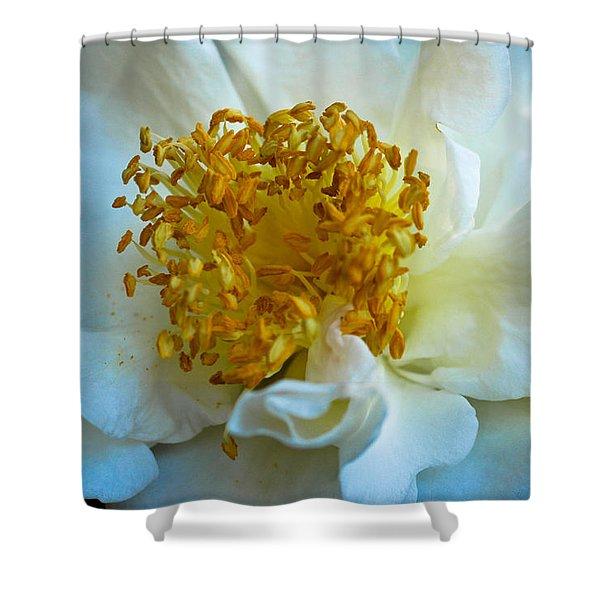Camellia Shower Curtain