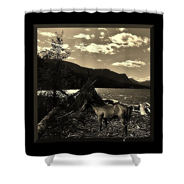 Camp Site Shower Curtain