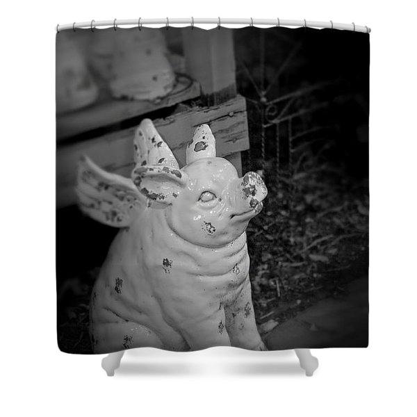 Can A Pig Fly? Shower Curtain