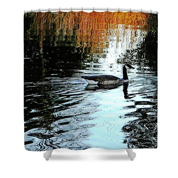Canadian Goose At Burden  Shower Curtain