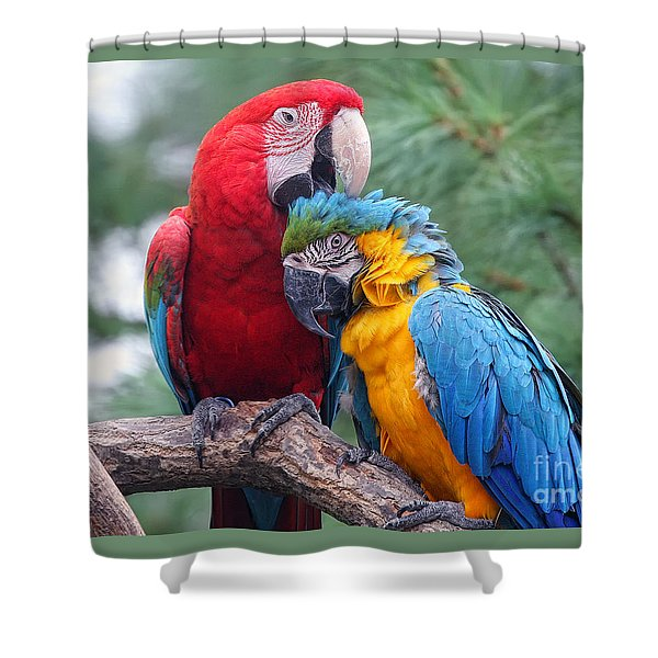 Grooming Session Shower Curtain