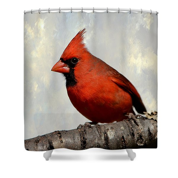 Cardinal 3 Shower Curtain